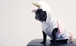 Want to Be the Next Startup Unicorn? You Need to Do This.